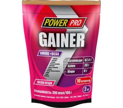 Gainer Power Pro 2 кг в Киеве