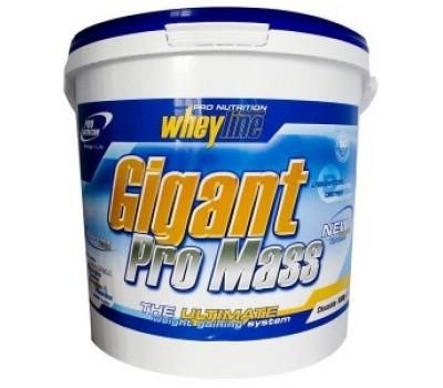 Gigant Pro Mass Pro Nutrition 5 кг в Киеве