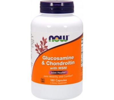 Glucosamine & Chondroitin with MSM 180 капсул в Киеве