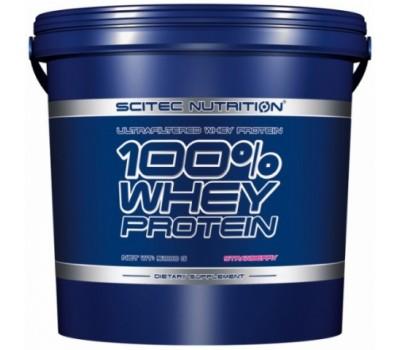 Scitec 100% Whey Protein 5 kg в Киеве