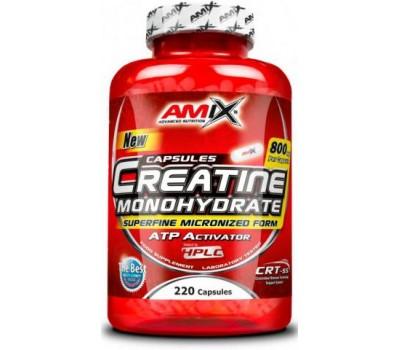 Creatine Monohydrate Amix 220 капсул в Киеве