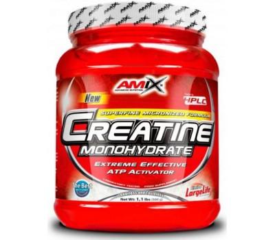 Creatine Monohydrate Amix 500g в Киеве