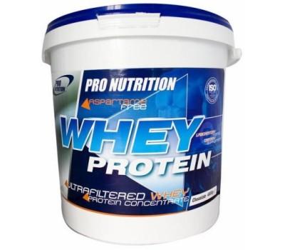 Whey Protein Pro Nutrition 4000g в Киеве