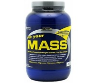 Up Your Mass MHP 908g