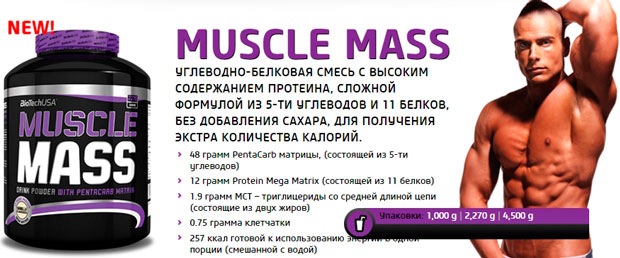 BioTech-USA-Muscle-Mass-banner