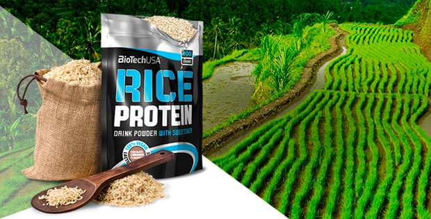 BioTech-USA-Rice-Protein-banner
